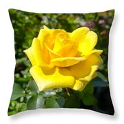 Perfect Yellow Rose Throw Pillow