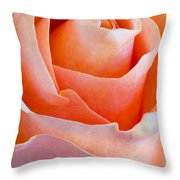 Perfection In A Peach Rose Throw Pillow
