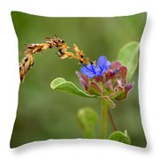 Perfectly Wonderous Flowerland Throw Pillow