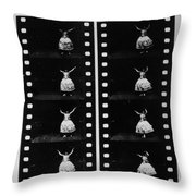 Perforated Film, 1888 Throw Pillow