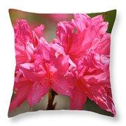 Periscope Pink Throw Pillow