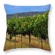 Perissos Hill Country Vineyard Throw Pillow