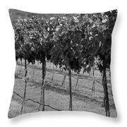 Perissos Winery Throw Pillow