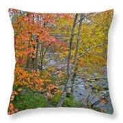 Perkiomen Creek - Perkiomenville Pa - Autumn Foliage Throw Pillow