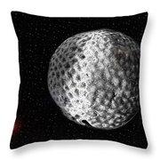 Permian Extinction Event Throw Pillow