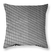 Perseverence Needed Throw Pillow