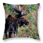Personal Space Throw Pillow