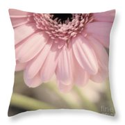 Personally Pink Throw Pillow