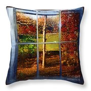 Perspective On Fall  Throw Pillow