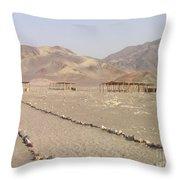 Peru Nazca Bones Site Throw Pillow
