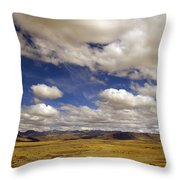 Peruvian High Plains Throw Pillow