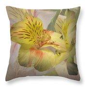 Peruvian Lily Framed Throw Pillow