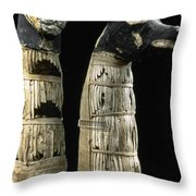 Pet Mummies, 1st Century Throw Pillow