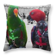 Pet Parrots In A Cafe Throw Pillow