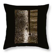 Petal Snow Throw Pillow
