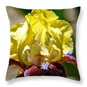 Petal Up Throw Pillow