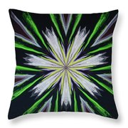 Petaluma Throw Pillow