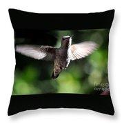 Peter Pan-i'm Flying Throw Pillow