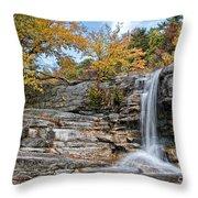 Peterskill Falls Throw Pillow