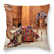 Petra Camels Throw Pillow