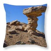 Petrified Camel Throw Pillow
