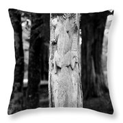 Petrified In Time Throw Pillow