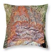 Petrified Stump Throw Pillow