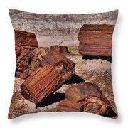 Petrified Wood Throw Pillow