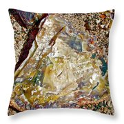 Petrified Wood In Crystal Forest In  Petrified Forest National Park-arizona Throw Pillow