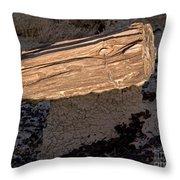 Petrified Wood On A Pedestal Throw Pillow