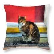 Pets - Tabby Cat By Red Door Throw Pillow