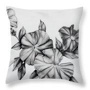 Petunias Throw Pillow