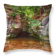 Pewits Nest Throw Pillow