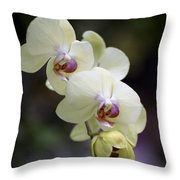 Phal Ming Chao Dancer 0754 Throw Pillow