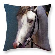 Phantom Lover - Portrait Of A Race Horse Throw Pillow