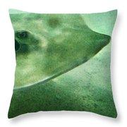 Phantom - Manta Ray Art By Sharon Cummings Throw Pillow