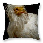 Pharaoh's Chicken Throw Pillow