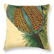 Pheasant 1837 Throw Pillow