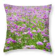 Phield Of Phlox Throw Pillow