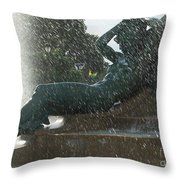 Philadelphia Fountain One Throw Pillow
