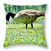 Philly Goose In The Grass Throw Pillow