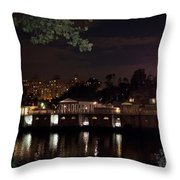Philly Waterworks At Night Throw Pillow