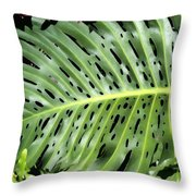 Philodendron 6 Throw Pillow