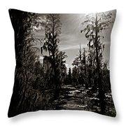 Phinizy Swamp Throw Pillow