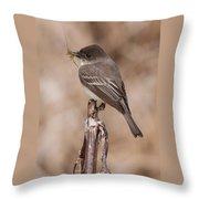 Phoebe Nesting Throw Pillow