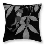 Phoenix Fall 05 Throw Pillow