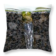 Phone Case - Cold And Clear Water Throw Pillow