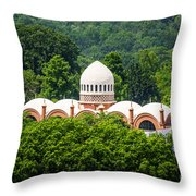 Photo Of Elephant House At Cincinnati Zoo Throw Pillow by Paul Velgos