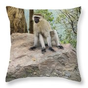 Photogenic Monkey Throw Pillow