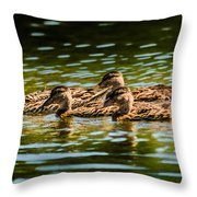 Photography Painting Of Mother And Her Ducklings Throw Pillow
